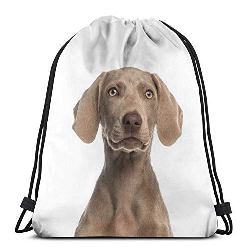 IUBBKI Mochila con cordón con estampado, letrero de perro Weimaraner, bolsa de cuerda Mochila Cinch Bolsa de playa de nailon resistente al agua para gimnasio, compras, deporte, yoga, calcetines navid