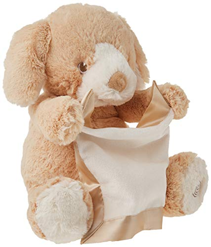 Gender-Neutral tan Peek-A-Boo Puppy Features Safe, Soft Embroidered Eyes and Movable arms Holding a Matching, Satin-Accented Blanket That Provides Additional Tactile Play Sensation.