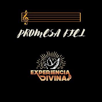 Promesa Fiel