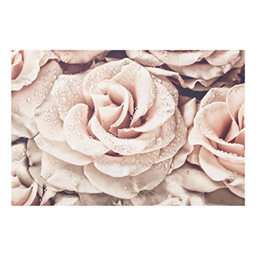 Bilderwelten Paraschizzi in Vetro - Rose Seppia con Gocce d'Acqua 59 x 90cm