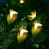 Salcar 10 m Solaire Abeille Guirlande Lumineuse, 60 LED Guirlande Lumineuses Solaire pour Interieur Exterieur Décorative - Blanc Chaud
