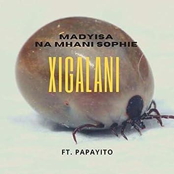 Xigalani (feat. Papayito)