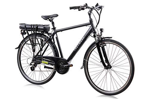 tretwerk DIREKT gute Räder Alkmaar 2.0 28 Zoll Trekking E-Bike Herren, 24 Gang Kettenschaltung