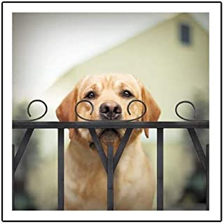 Watson The Sleuth Loose Leashes Greeting Card Blank Inside Any Occasion
