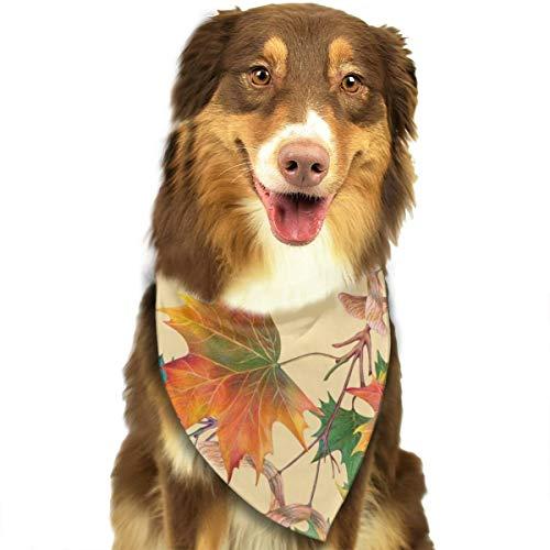 Sitear patroon esdoorn van kleur potlood op gele achtergrond hond kat Bandana driehoek slabbetjes sjaal huisdier Kerchief halsdoek set voor kleine tot grote hond katten gepersonaliseerd