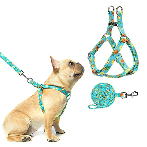 PAWCHIE Dog Harness and Leash Set, No Pull Dog Vest Harness for Small Medium Dogs Puppies, Adjustable Heavy Duty Halter…