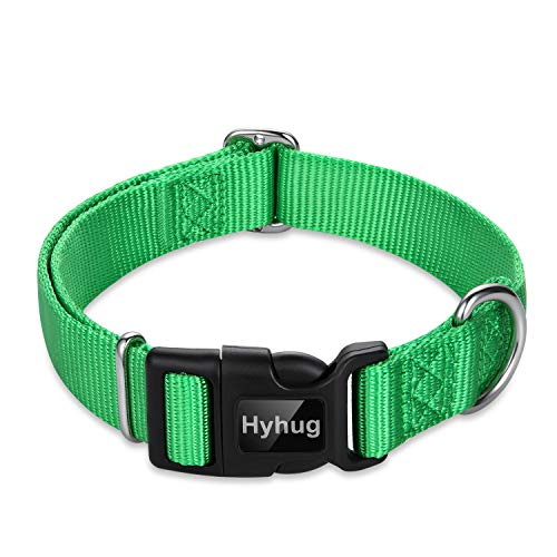 Hyhug Pets Classic Regular Dog Collar with Easy to Put On and Off Buckle. (Large, Lime Green)