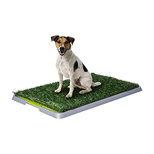 L'originale Potty Patch! Lettiera in erba sintetica per cani - Tappetino toilette wc ideale per cuccioli - Sostituisce i panni assorbenti - Antibatterico ed antiodore - Ideale per la pipi in casa dei nostri cagnolini - Per cani fino a 7KG - Grande circa 70 x 44 x 5 cm