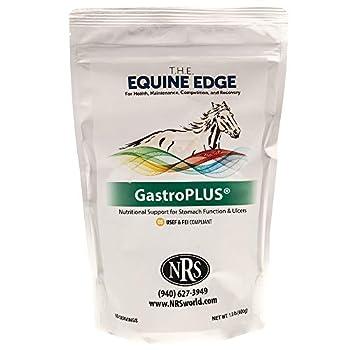 Best total health enhancement equine Reviews