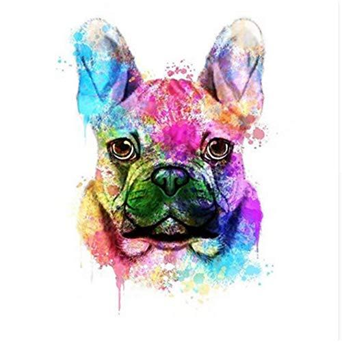 Zhxx Malen Nach Zahlen Erwachsene Eine Farbige Bulldogge Tierhochzeit Ation Kunstbild Geschenk Leinwand AcrylFür Anfänger Ohne Frame 40X50Cm