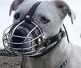 Champion Muselière en métal pour chien Amstaff & Pitbull et autres chiens (5, noir)
