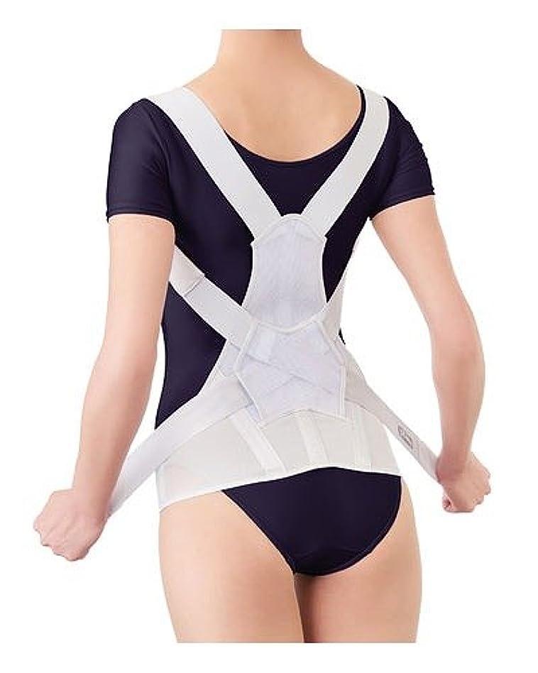 性格爆風ボンドサポート 背筋 姿勢 ベルト 調節 安定 お医者さんのがっちり背筋ベルト / M~L