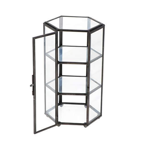 PETSOLA Geometrisches Glas Terrarium Kasten Schmuckschatulle Glas Sukkulente Pflanzgef Deko Hexagon Form - Schwarz, 11x10x19cm