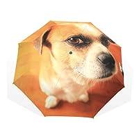 折り畳み傘 折りたたみ傘 日傘 手開 UVカットき 三つ折り 晴雨兼用 梅雨対策 耐強風 8本骨 男女兼用 犬柄 ワンコ