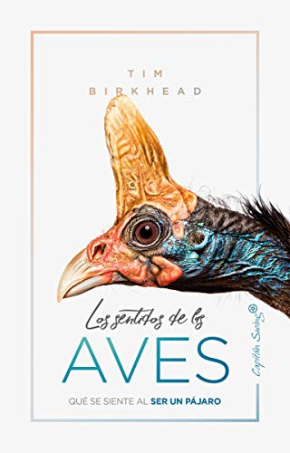 Los sentidos de la aves: Qué se siente al ser un pájaro (ENSAYO)