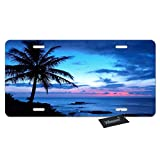 WONDERTIFY License Plate Tropical Paradise Ocean Beach Scene with Palm Trees Decorative Car Front License Plate,Vanity Tag,Metal Car Plate,Aluminum Novelty License Plate,6 X 12 Inch (4 Holes)