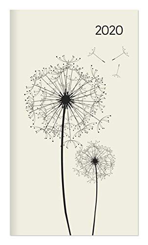 Miniplaner Style Pusteblumen 2020 - Taschenplaner - Taschenkalender (9 x 15) - Weekly - 64 Seiten - 1 Seite 1 Woche - Terminplaner