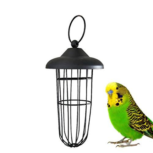 Balacoo Vogelhirse Sprayhalter - Papageienrohr Feeder Obst Gemüse Halter Samen Feeder für Sittich Nymphensittich Conure Fink Kanarienkäfig Käfig Futterspielzeug