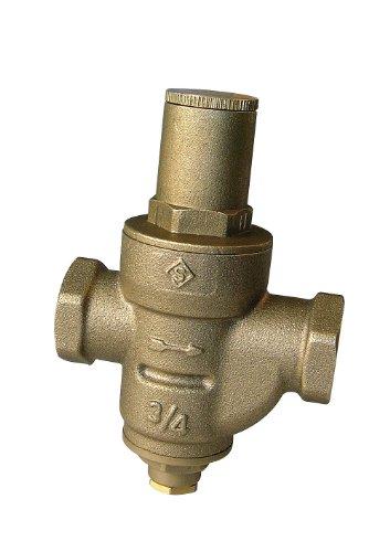 SOMATHERM FOR YOU 195-20 Réducteur de Pression à Membrane-Double Femelle 20/27, Gris