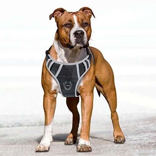 Idepet Imbracatura per Cani con Manico, Regolabile Catarifrangente Facile Controllo per Cani di Taglia Piccola Media e Grande