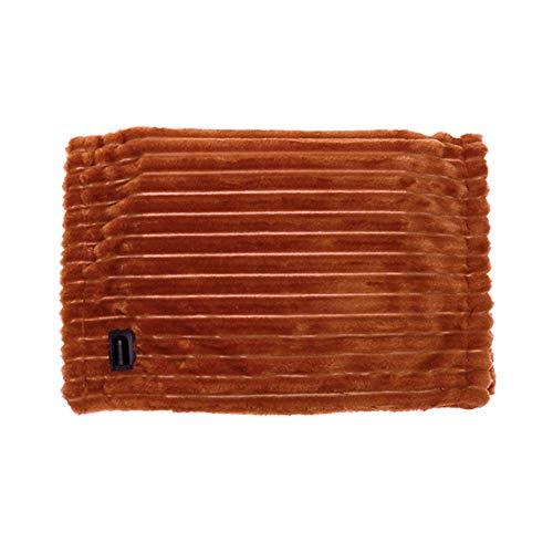 newhashiqi Manta eléctrica de calefacción, 12 V, Plegable, Lavable, Manta eléctrica para la Rodilla, para el hogar, Oficina, Coche, camión, Viaje, Manta Suave y cálida