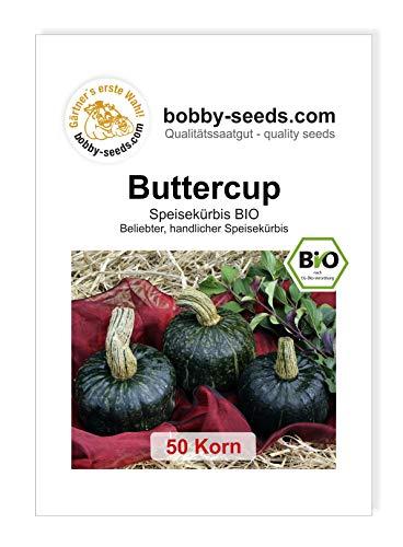 Buttercup BIO Kürbissamen von Bobby-Seeds 50 Korn
