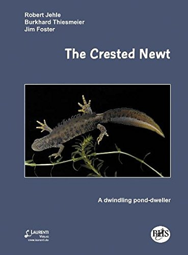 The Crested Newt: A Dwindling Pond Dweller