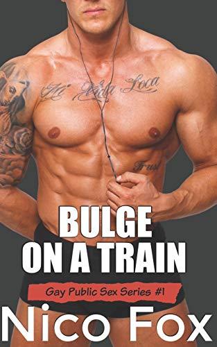 Bulge on a Train: A Gay Public Sex Story (Gay Public Sex Series, Band 1)