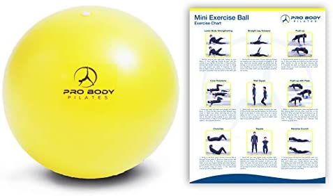 ProBody Pilates Mini Exercise Ball - 9 Inch Small Bender Ball for Stability, Barre, Pilates, Yoga, Balance, Core Training, Stretching and Physical Therapy with Workout Guide