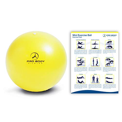 ProBody Pilates Ball Workout Ball - 9 Inch Mini Physical Therapy Ball for Stability, Barre, Yoga, Bender, Balance, Core Training, Recovery Small Exercise Ball for Between Knees (Yellow)