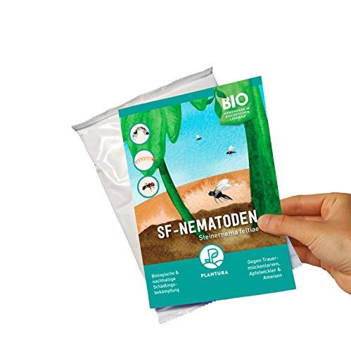 Plantura SF-Nematoden gegen Trauermücken, Apfelwickler & Ameisen, wirksam & nachhaltig, 5 Mio