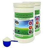 Nortembio Agro Sulfato de Magnesio Natural 2x1,2 Kg. Abono de Uso Universal. Favorece el Crecimiento de Cultivos, Jardines, Plantas de Interior y Exterior.