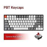 Keychron K2 Bluetooth Wireless Mechanical Keyboard with Double Shot PBT Keycaps/Gateron Red Switch/White LED Backlit/Anti Ghosting/N-Key Rollover, 84 Key Tenkeyless Keyboard for Mac Windows