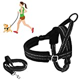 SlowTon No Pull Small Dog Harness and Leash, Heavy Duty Easy To Walk Vest...