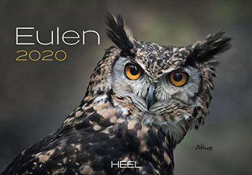 Eulen 2020: Der Sympathische Eulen-Kalender mit den charmanten Namen