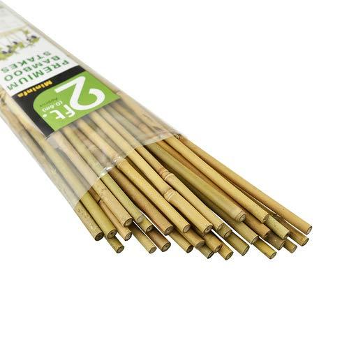 Mininfa Natürliche Bambusstäbe 60CM, Umweltfreundliche Bambusstange, Bambusstangen, Pflanzenstäbe für Tomaten, Bäume, Bohnen, 30 Stück