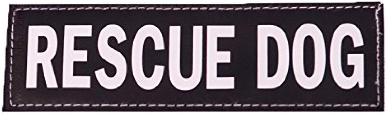 EzyDog Side Badge  aramente identifica il tuo cane quando indossi il set di cover di due badge (Salvate Dog, Large)
