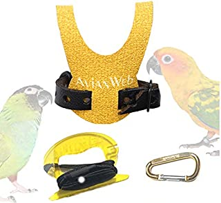 Avianweb EZ Conure Harness & 6 Foot Leash