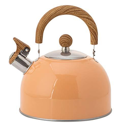 LangCher Hervidor de té de silbido de 2.5 litros - Moderno bilito de té de Acero Inoxidable para fogones con empuñadura Fresca ergonómica
