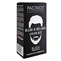 Hair & Beard Color Kit - Eliminate Grays in 5 Min. - Easy to Apply Brush-In Formula - Hair Coloring Formula for Men - Create a Fuller Look - Enhance the Appearance of Your Hair, Moustache & Beard - Brush Included (Black)