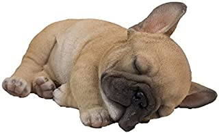 Best french bulldog sleeping Reviews