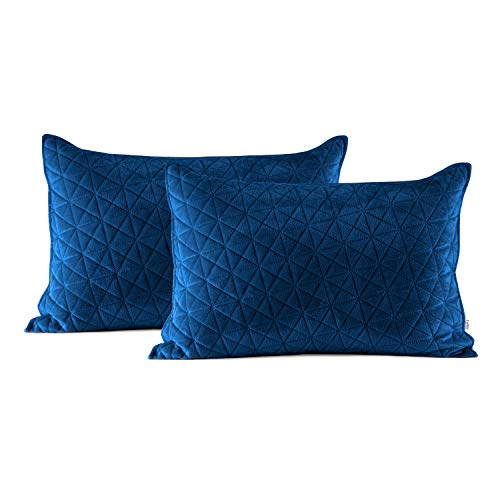 AmeliaHome Velvet Kissenbezüge, Polyester, Laila Blau, 2 50x70 cm