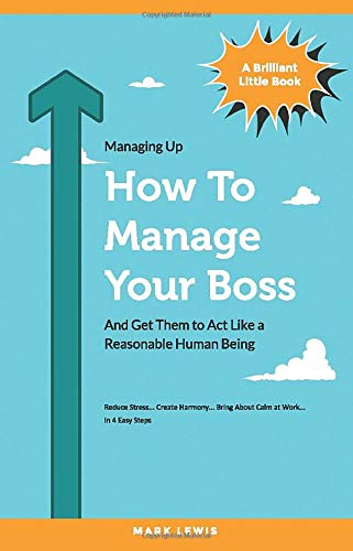 How To Manage Your Boss: And Get Them To Act Like A Reasonable Human Being (Brilliant Little Books, Band 1)