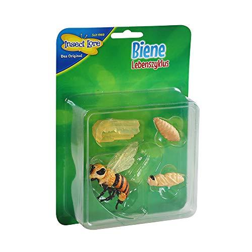HCM Kinzel 48144 Insect Lore - Lebenszyklus Biene aus Kunststoff, bunt