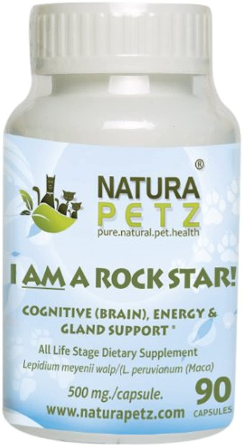 I AM A ROCK STAR  Memory, Gland (Hypothalmic, Pituitary and Adrenal) & Energy Support for All Life Stage Dogs and Cats
