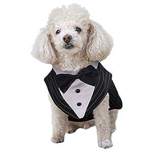 ASENKU Dog Tuxedo Suit Costume, Pet Wedding Birthday Party Formal Shirt with Bandana Set Bow Tie Collar for Small Medium, Large Golden Retriever Samo Bulldogs, Black, M