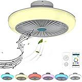 Ventilador de Techo con Luz RGB Cambiador de Color con Bluetooth Altavoz Música Lámpara de Ventilador LED Regulable Mando a Distancia y APP Silencioso Ventilador para Salón Cuarto Comedor 72W 45cm