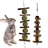 Bunny Chew Toys for Teeth, Natural Wood Small Animal Rabbit Molar Toys, Suitable for Bunny, Guinea Pigs, Chinchilla, Hamsters