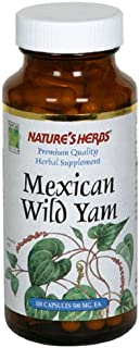 Nature's Life Wild Yam 1000mg Herbal Supplement | Women's Health Formula | With Diosgenin for Healthy Balance Support | No...