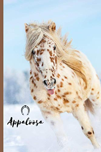 Appaloosa: Journal and Notebook - Composition Size (6'x9') With 120 Lined Pages, Perfect for Journal, Doodling, Sketching and Notes